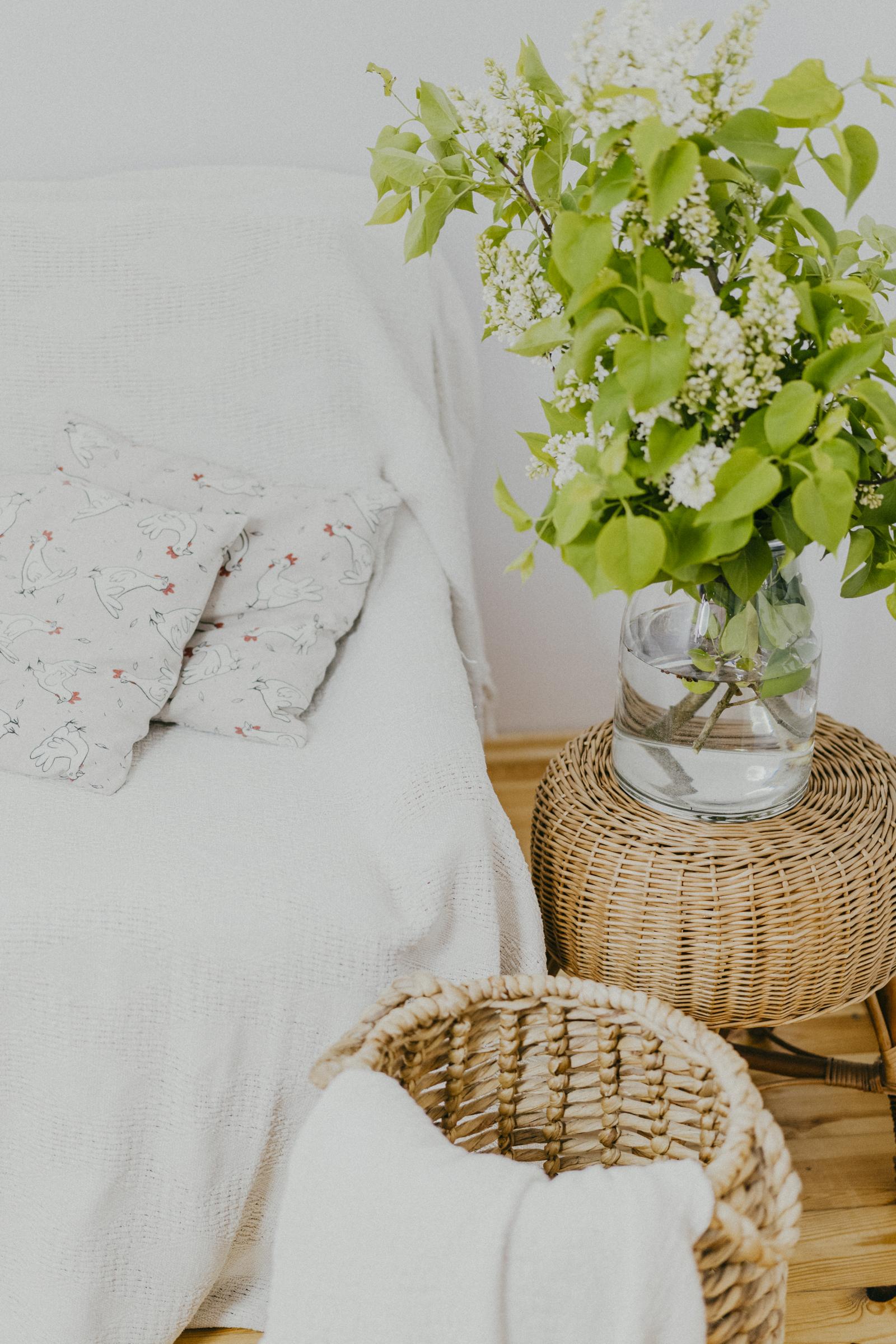 Plattówka - Domek z Kurnika - Where will I sleep?