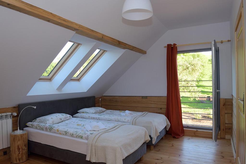 Obrocz 137 - Where will I sleep?
