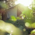 Boho Park Glamping - Where will I sleep?